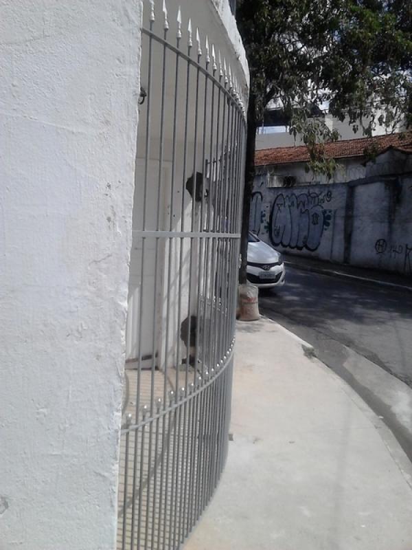 Portão Industrial Saúde - Portão Metálico com Tela